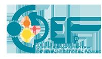 CDEF 31 Logo